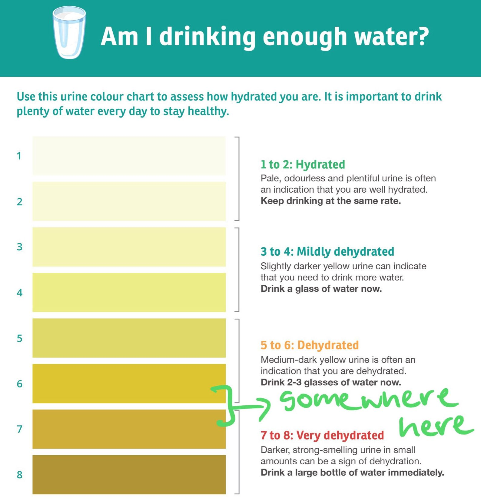 chart of different urine colours showing from 1 (hydrated) to 8, a darker colour (very dehydrated), my urine during the 3 day fast in the mornings was somewhere between 6 and 7